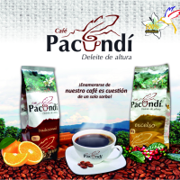 backing-pacundi